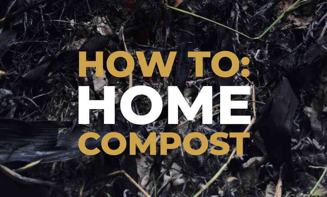 Your Guide To Home Composting